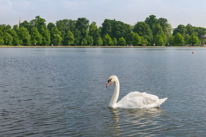 London's Perfect Parks
