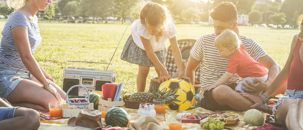 Go for a Picnic in a Park